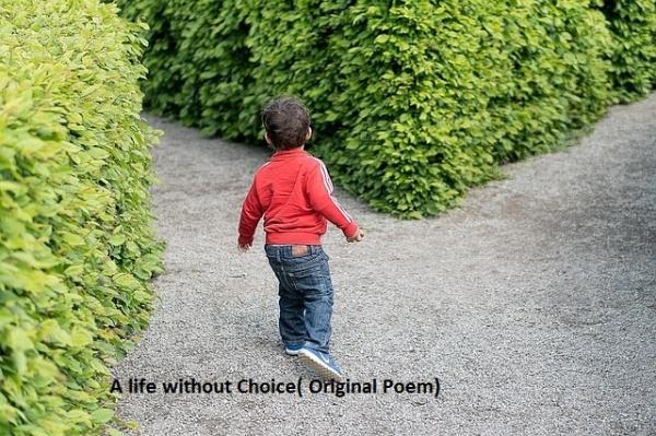 child-1721906_640.jpg