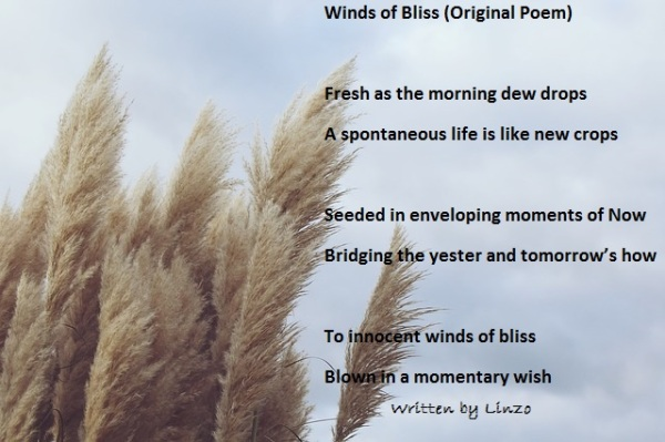 winds of bliss